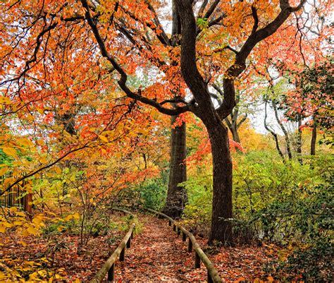 16 Beautiful Public Gardens To Visit In Fall  Best Public