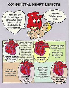 Congenital Heart Disease Quotes. QuotesGram