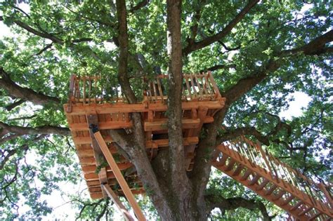 How To Build The Perfect Tree House For Kids