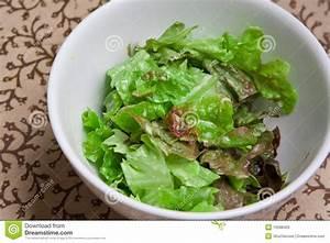 Bol A Salade : bol frais de salade verte photo stock image 10588420 ~ Teatrodelosmanantiales.com Idées de Décoration