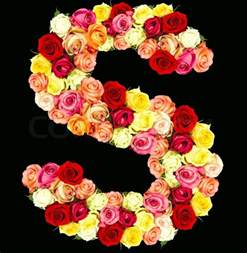 flowers roses s roses flower alphabet isolated on black stock photo