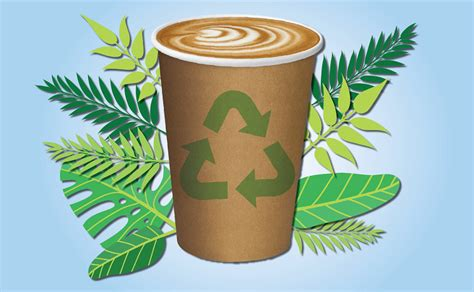 The Truth About Disposable Coffee Cups & The Abc's War On Benefits Of Coffee During Workout Kopiko Scholarly Articles Testosterone In Winter Infused Oil Starbucks Iced No Classic Long Term