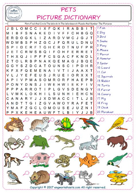 pets esl printable english vocabulary worksheets