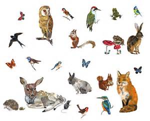 Le Animaux Design by Les Animaux 2 Sticker Set Of 27 Stickers 27 Stickers By
