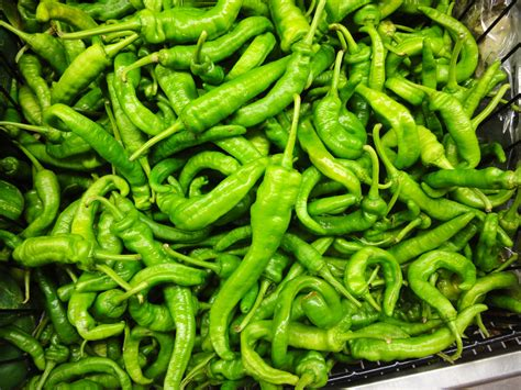 green chili pepper green chili peppers cheong gochu korean cooking ingredients maangchi com