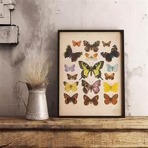 Butterflies Vintage Print