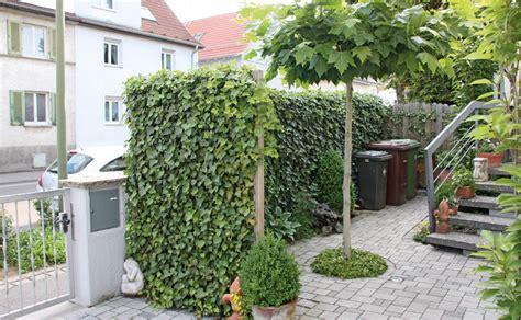 occultations pour le jardin  la terrasse hornbach suisse