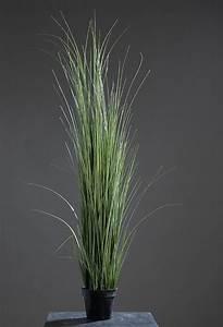 Kunstgras Im Topf : eis gras im topf gras kunstgras kunstpflanze isolepsis 150 cm ebay ~ Eleganceandgraceweddings.com Haus und Dekorationen