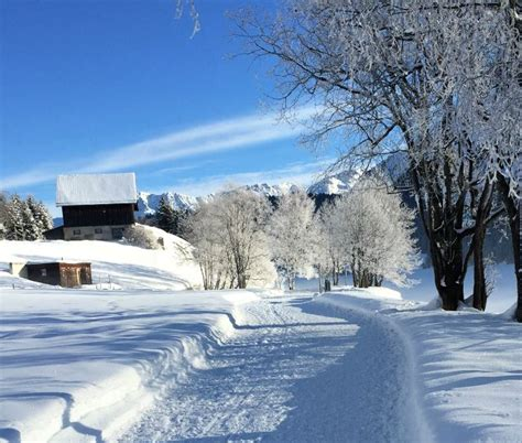 winter vacation ideas for non skiers in switzerland