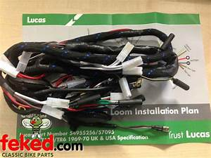 Electrical    Wiring Harness    Triumph Wiring Harness    Triumph T100  T120  Tr6 Genuine Lucas