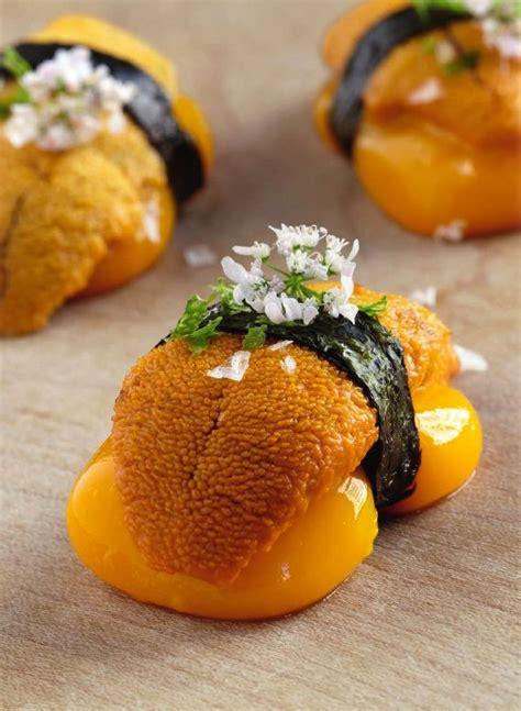 oursin cuisine les 28 meilleures images à propos de oursin sur
