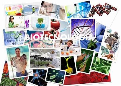 Medio Ambiente Biotecnologia Social Parte Natural