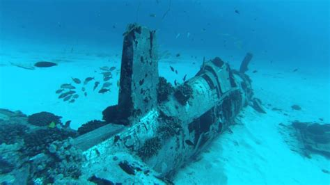 diving  corsair wreck  maunalua bay hd youtube