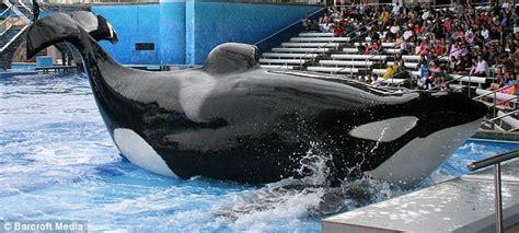 Shamu In Seaworld, San Diego.jpeg