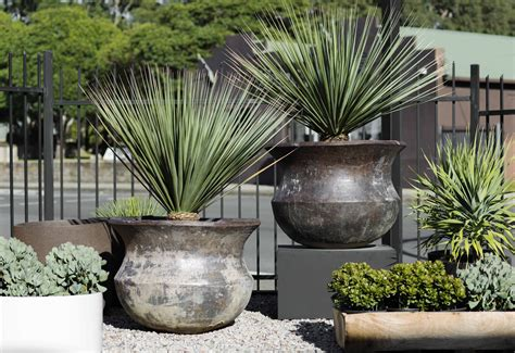woodfired cauldron garden life garden containers