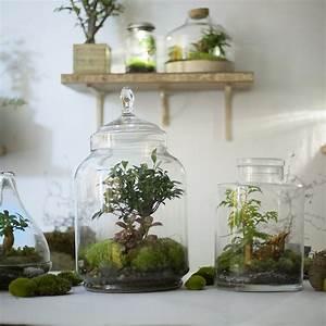 Terrarium Plante Deco : green factory la main verte pour les nuls from paris ~ Dode.kayakingforconservation.com Idées de Décoration