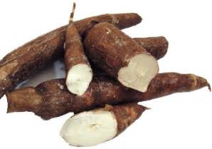 Yucca Root Vegetable