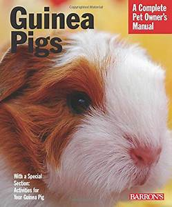 Top 10 Best Guinea Pig Care Guide For Beginners  Updated 2020