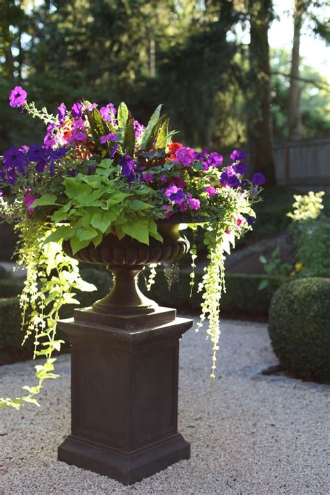 planting urns ideas best 25 garden urns ideas on pinterest urn planters urn and container flowers