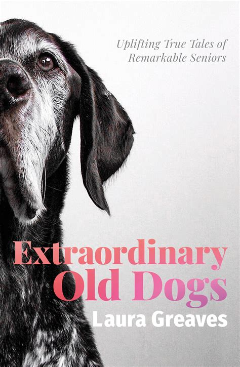 Extraordinary Old Dogs By Laura Greaves Penguin Books