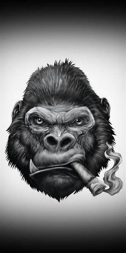 Monkey Zedge Gorilla Wallpapers Definition Drawings Tattoo