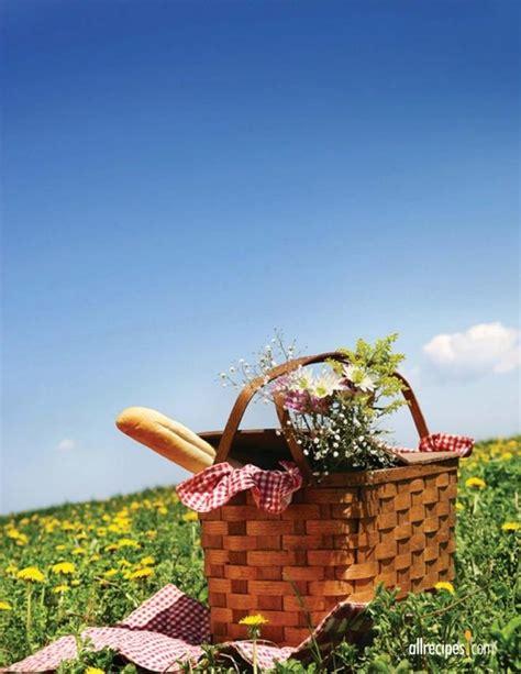 summer picnics summer picnic picnic party pinterest