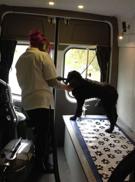 Mobile Groomers by 17 Best Ideas About Mobile Pet Grooming On