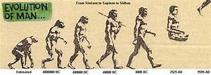 Gsms Theory Of Evolution