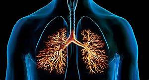 Visual Guide To Bronchitis  Symptoms  How Long It Lasts