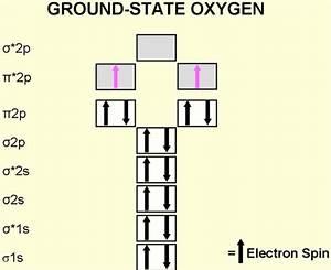 Electron Configuration Of The Diatomic Oxygen Molecule