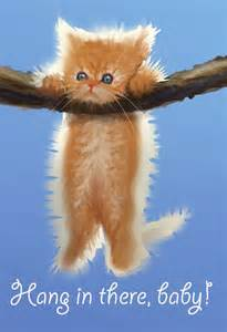 hang in there cat hang in there cat poster hang in there baby by