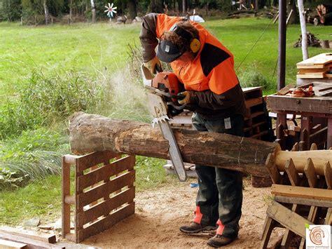 6 Skulpturen Aus Holz Selber Machen By Mario Mannhaupt