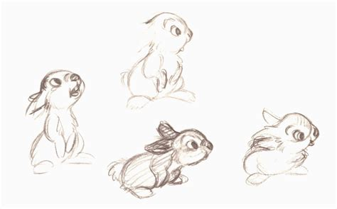 drawn rabbit animation pencil   color drawn rabbit