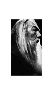 Always - Harry Potter Photo (23911357) - Fanpop