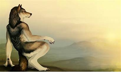 Furry Wolf Wolves Fandom Furries Anthro Wallpapers
