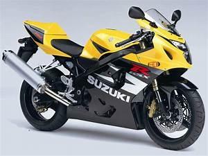 2004 Suzuki Gsxr750 Service Manual Gsx
