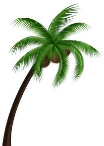 Coconut Palm Tree Clip Art