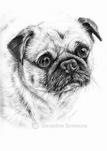 780 best images about Domestic Animals Grayscale Coloring ...