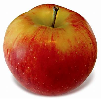 Jonagold Apples Empire Apple Any Lois Weeks