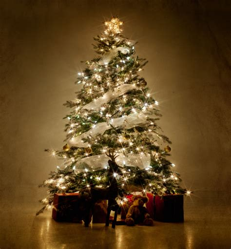 how to do christmas lights on trees rediscover the meaning of christmas symbols behind the