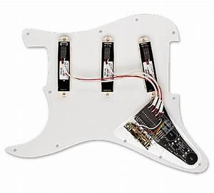 Emg Dg20 David Gilmour Signature Prewired Pickguard