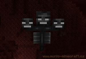 Wither Minecraft - E.B.