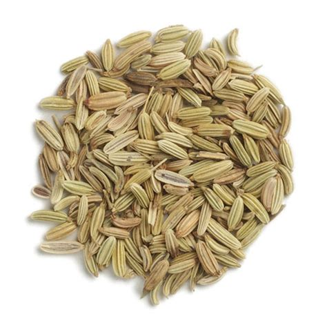Frontier Co-op Fennel Seed, Whole, Organic 1 lb - Frontier