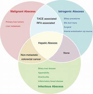 The Evolving Nature Of Hepatic Abscess  A Review