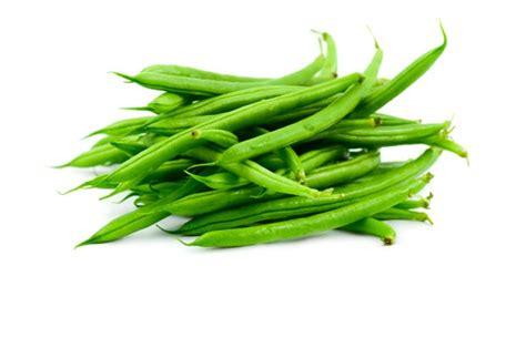 cuisiner haricot vert cuisiner des haricots verts en boite haricots verts kraft