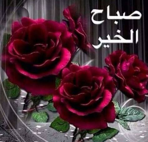 good morning  arabic  good morning love images
