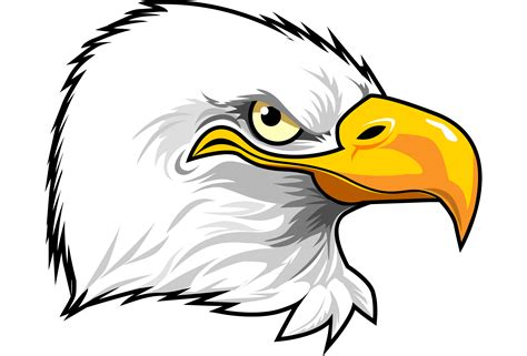Cartoon Eagle Head