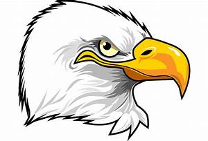 Cartoon Eagle Head - Cliparts.co