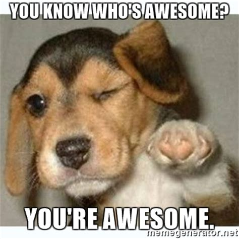 Fucking Awesome Meme - you know who s awesome you re awesome fist bump puppy meme generator