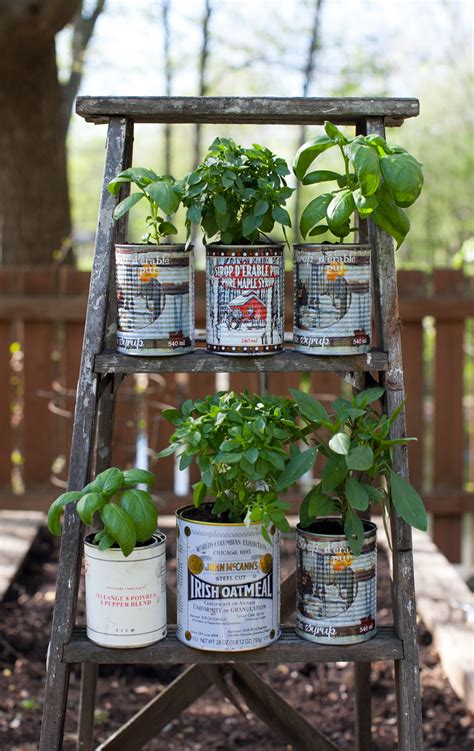 garden in a can recycled herb planters and an upcycled wooden ladder